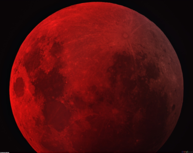 dark_red_moon_wallpaper-other
