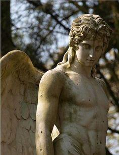 fe62d426711ba9f04ad6a18d736bb206--cemetery-statues-cemetery-angels
